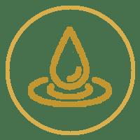 icon-hydration